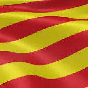 ·Bandera de Cataluña 1.50×90 (Animación Selección…)